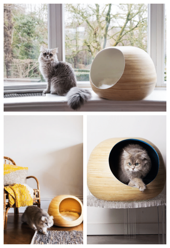 mobilier pour chat