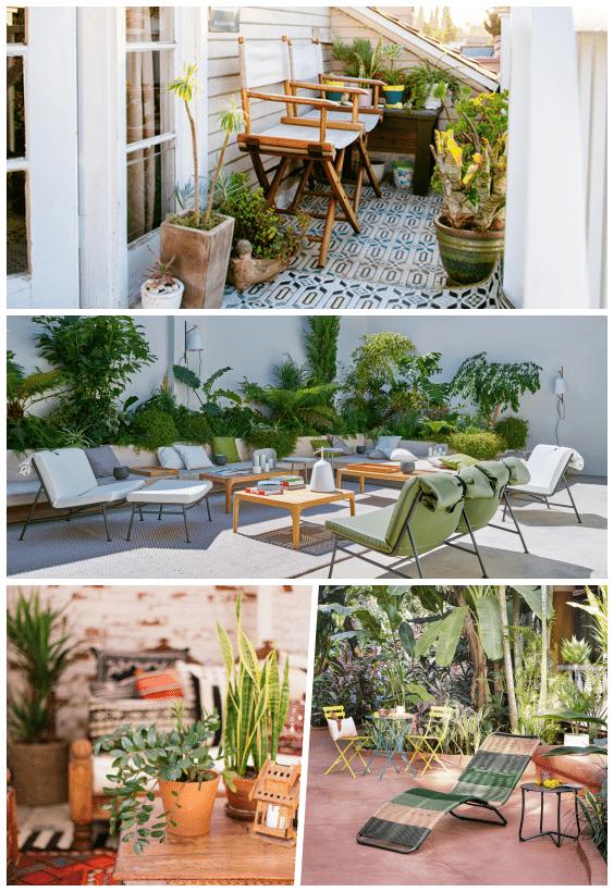 décoration extérieure plantes