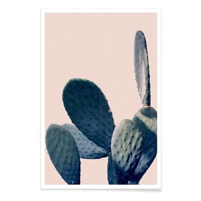 tableau cactus rose pastel