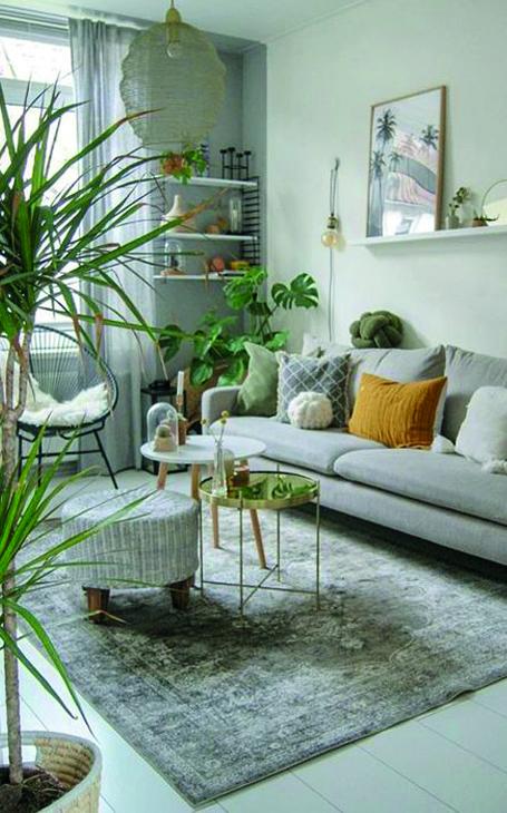 décoration petit salon