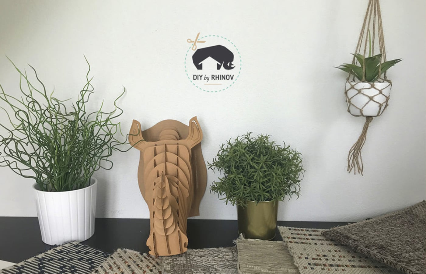décoration plante d'intérieur