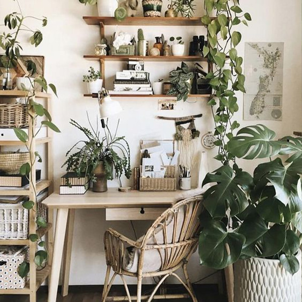 bureau jungle