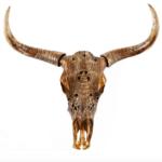 crane antilope déco