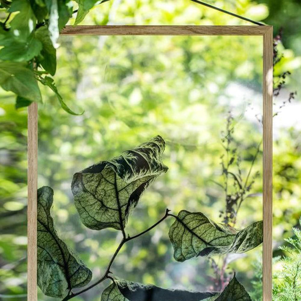 inspiration cadre herbier