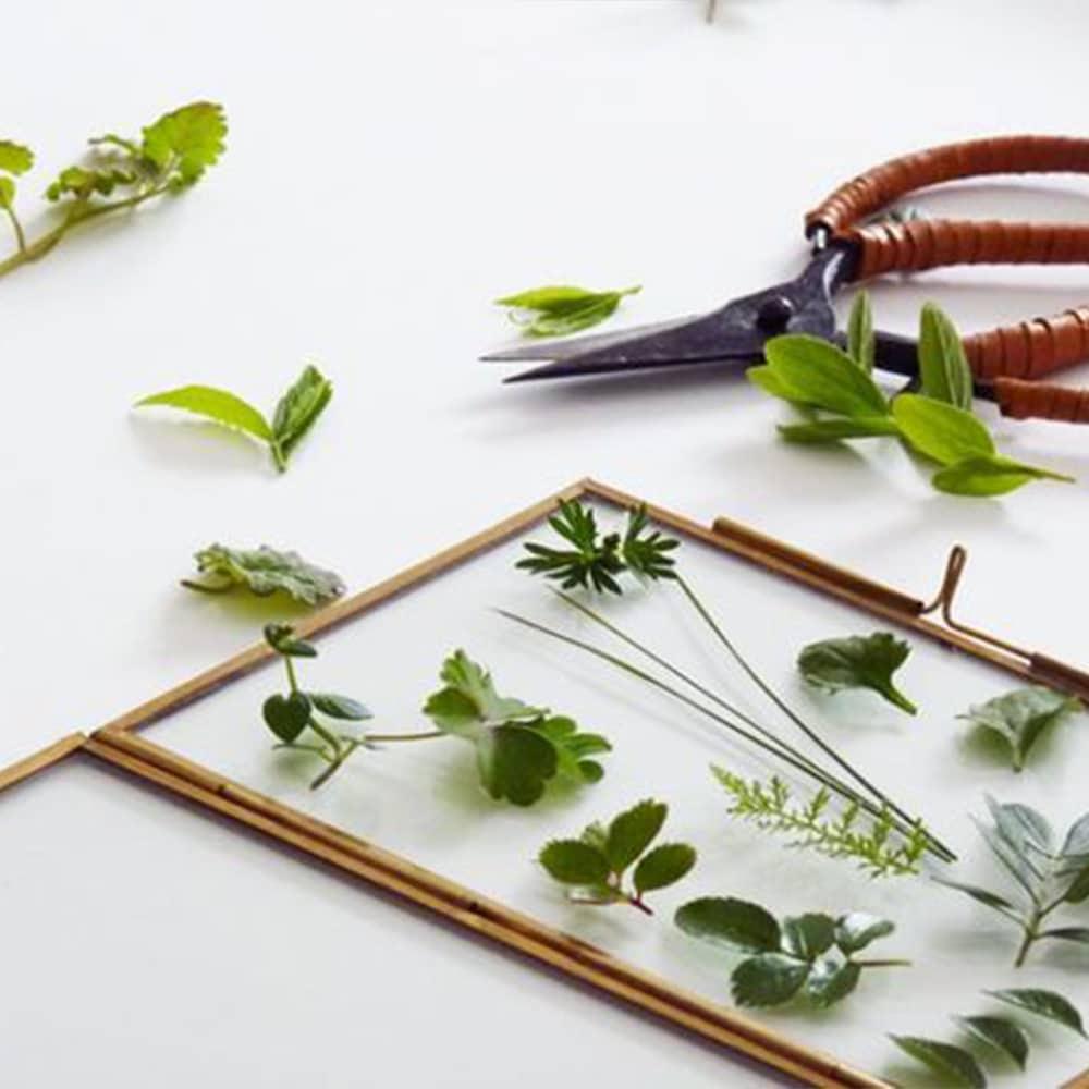 fabriquer cadre herbier