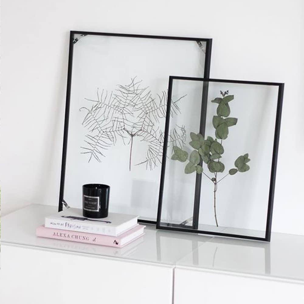 herbier cadre noir