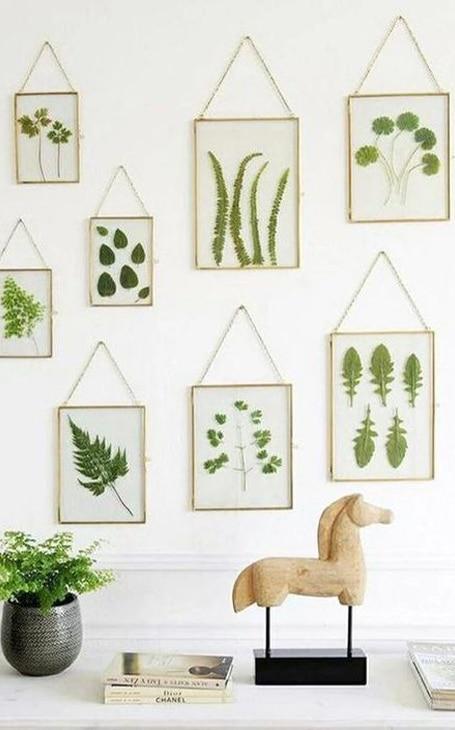 décoration murale herbier