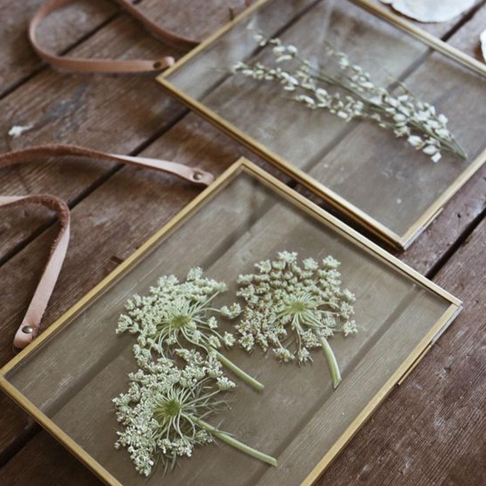 herbier cadre cuir et doré