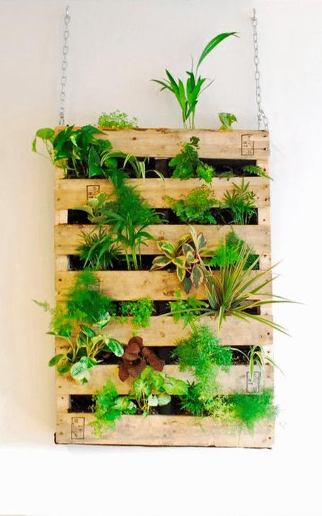 décoration intérieur végétale