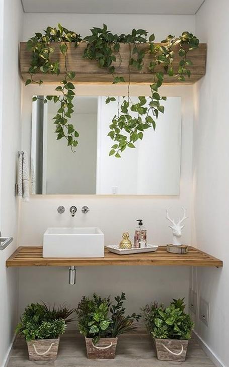 déco plantes salle de bain