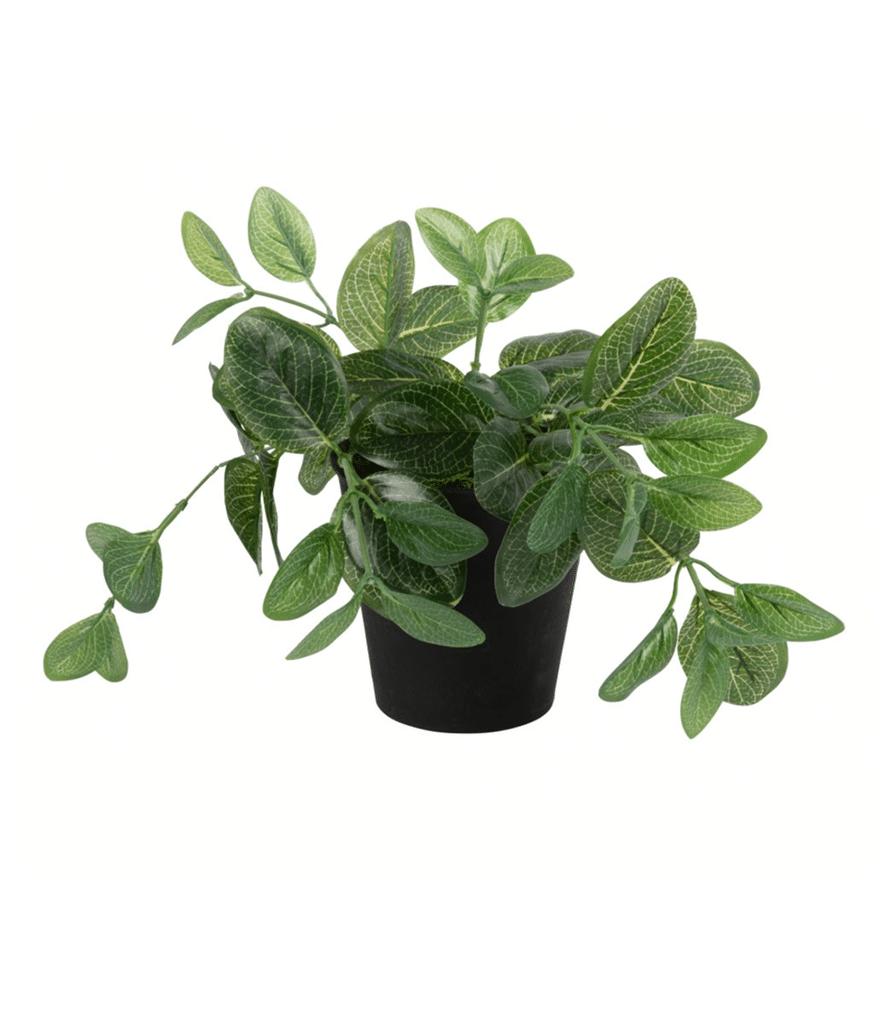 Plante artificielle pot noir