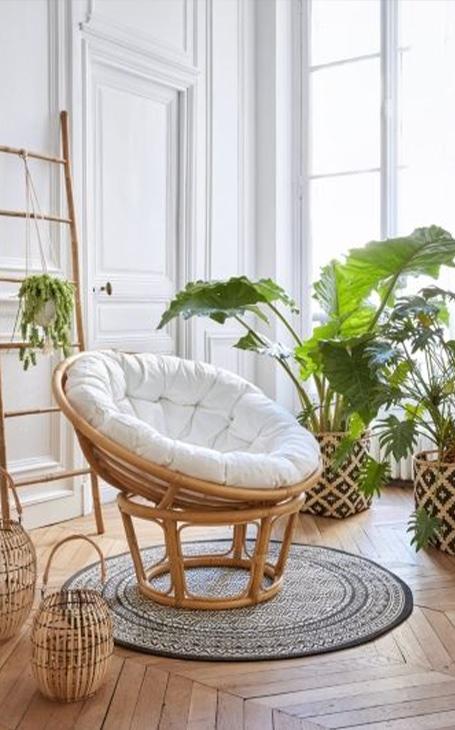 loveuse et déco plantes