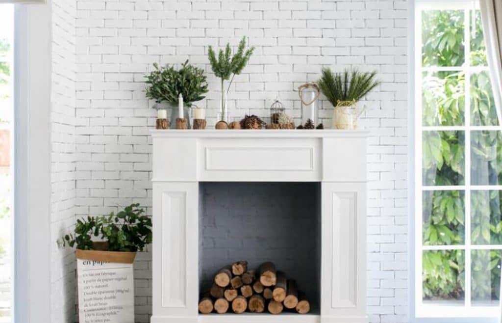 décoration cheminée plantes