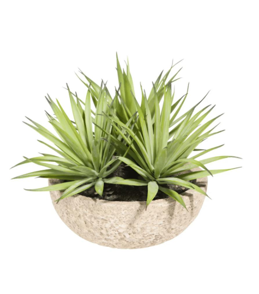 Yuccas artificiels Pot