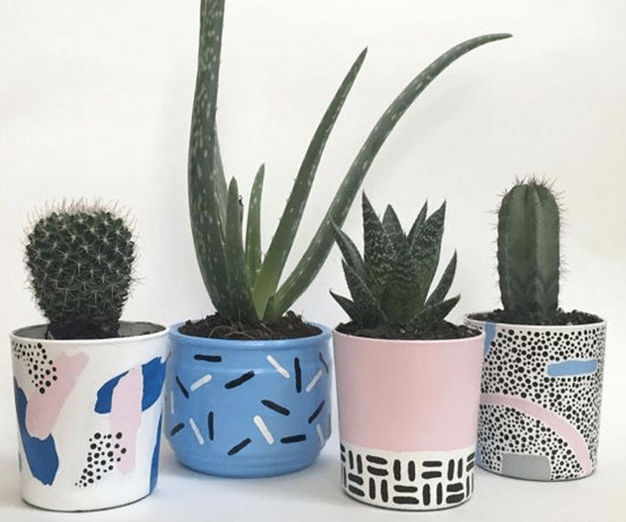 pots plantes appartements