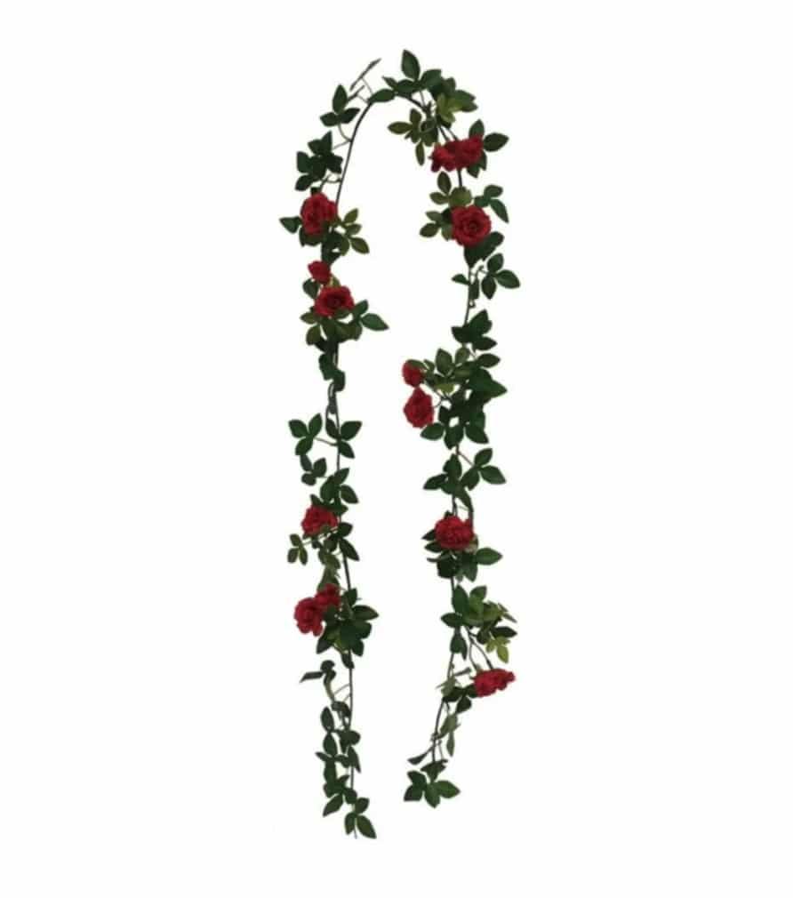 Guirlande de rosier rouge