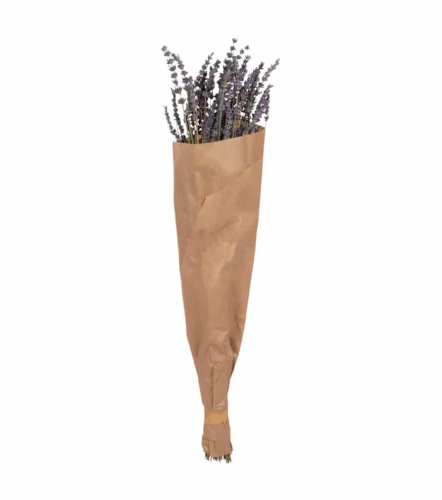Bouquet de lavande séchées