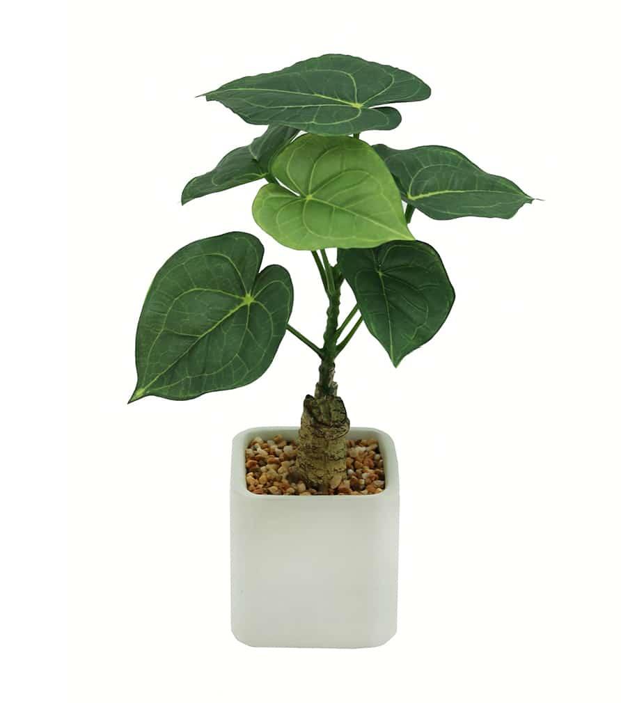 Plante philodendron artificielle pot céramique carré blanc 26 cm