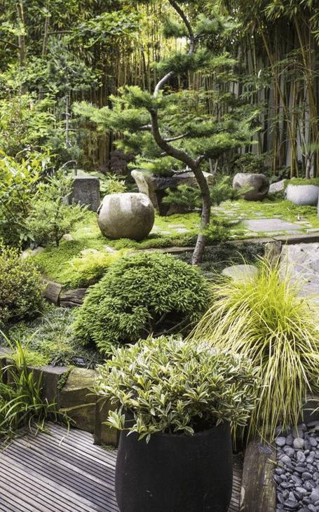 deco terrasse zen végétation luxuriante