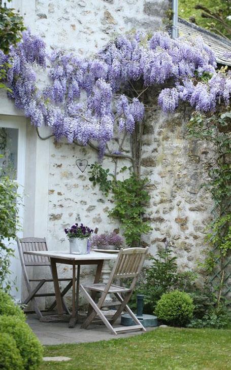 jardin fleuri charme