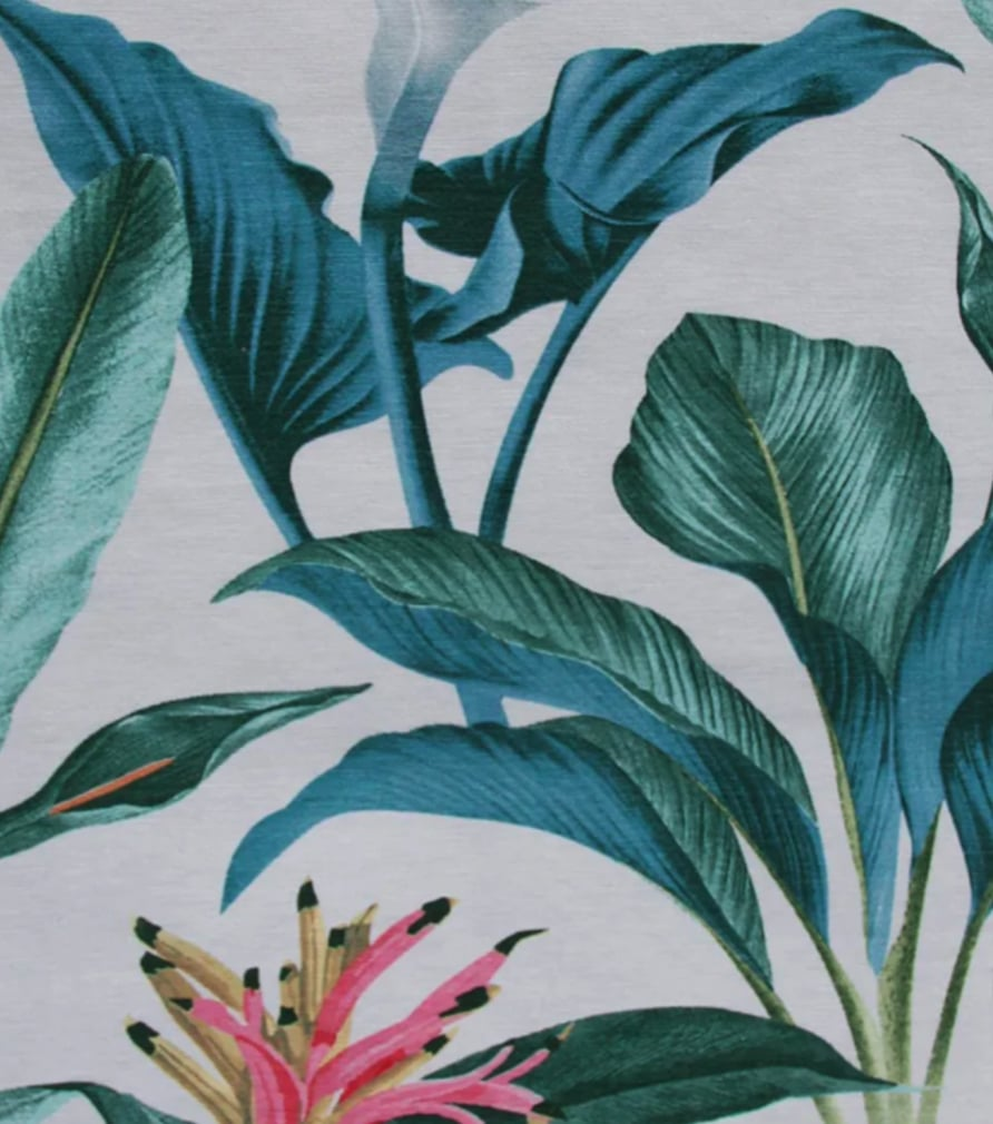 Nappe tropicale