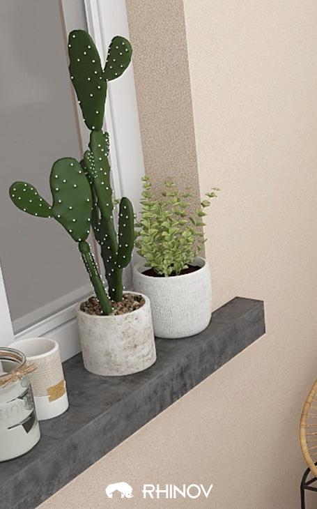 pot en béton cactus