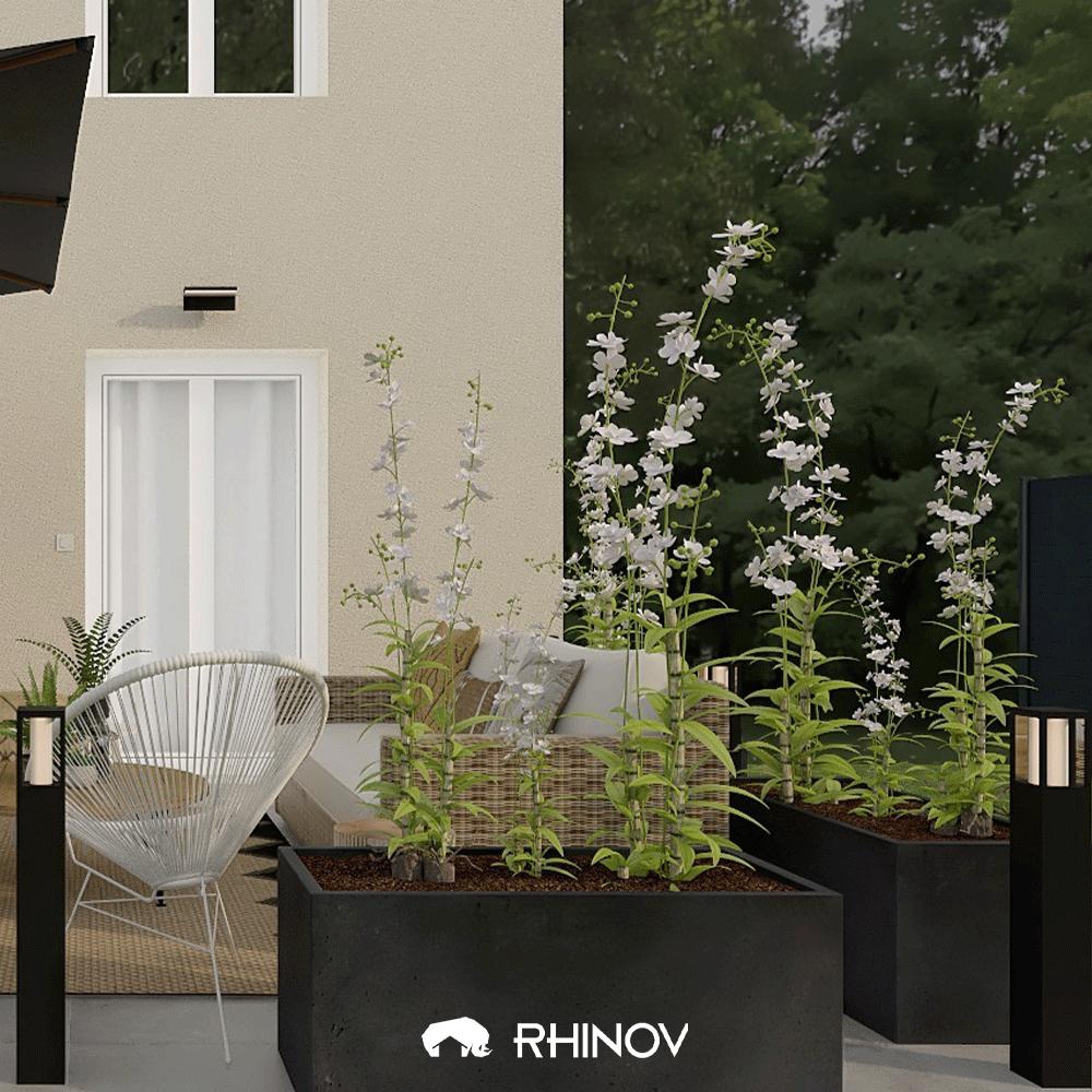 décoration plantes extérieur