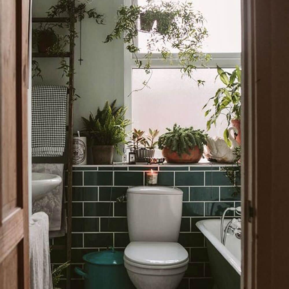 solution peinture wc vert avec luminosité